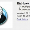 BizHawk 正式版 2.2.2 About